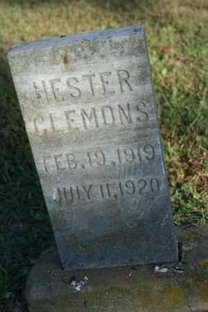 CLEMONS, HESTER - Washington County, Arkansas | HESTER CLEMONS - Arkansas Gravestone Photos