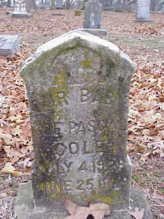 COLE, J. E. PASCALE - Washington County, Arkansas | J. E. PASCALE COLE - Arkansas Gravestone Photos