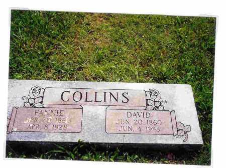 SELF COLLINS, FRANCIS (FANNIE) C. - Washington County, Arkansas   FRANCIS (FANNIE) C. SELF COLLINS - Arkansas Gravestone Photos