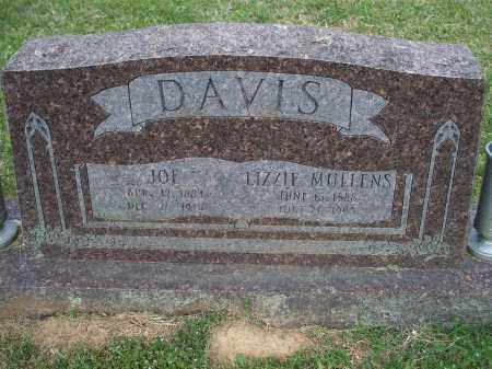 DAVIS, LIZZIE - Washington County, Arkansas | LIZZIE DAVIS - Arkansas Gravestone Photos