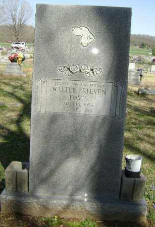 DAVIS, WALTER STEVEN - Washington County, Arkansas | WALTER STEVEN DAVIS - Arkansas Gravestone Photos