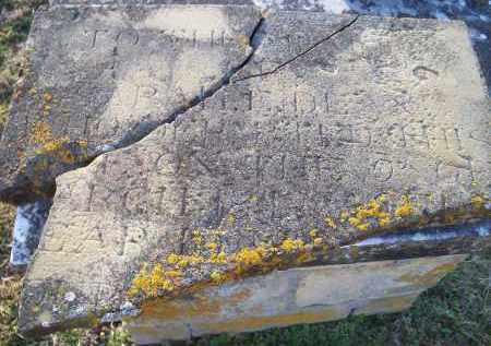 DEAN, SARAH F. - Washington County, Arkansas   SARAH F. DEAN - Arkansas Gravestone Photos