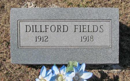 FIELDS, DILLFORD - Washington County, Arkansas | DILLFORD FIELDS - Arkansas Gravestone Photos