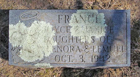 FRANCE, JOYCE - Washington County, Arkansas | JOYCE FRANCE - Arkansas Gravestone Photos