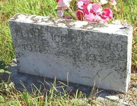 GABBARD, FLORENCE - Washington County, Arkansas   FLORENCE GABBARD - Arkansas Gravestone Photos