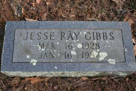 GIBBS, JESSE - Washington County, Arkansas   JESSE GIBBS - Arkansas Gravestone Photos