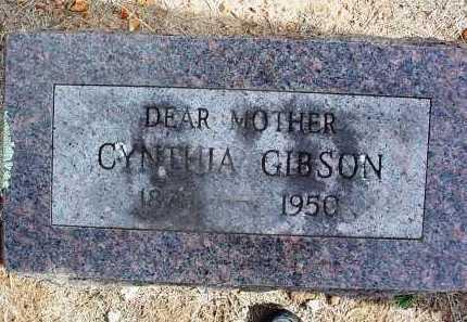 JOHNSON GIBSON, CYNTHIA - Washington County, Arkansas | CYNTHIA JOHNSON GIBSON - Arkansas Gravestone Photos