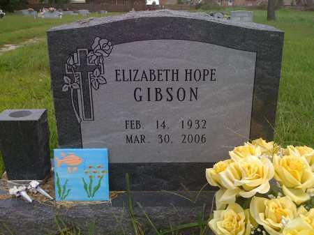 GIBSON, ELIZABETH HOPE - Washington County, Arkansas | ELIZABETH HOPE GIBSON - Arkansas Gravestone Photos