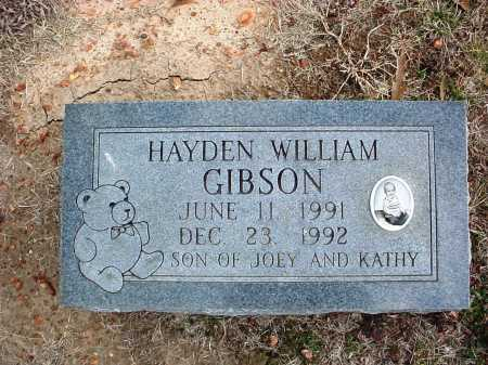 GIBSON, HAYDEN WILLIAM - Washington County, Arkansas | HAYDEN WILLIAM GIBSON - Arkansas Gravestone Photos
