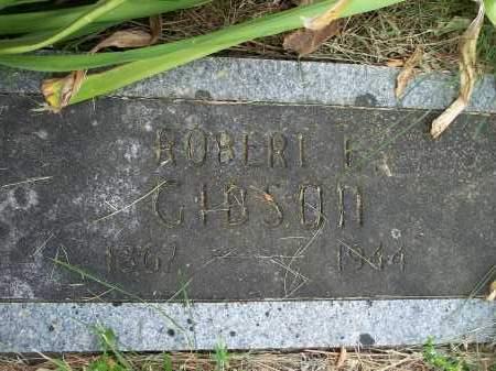 GIBSON, ROBERT E. - Washington County, Arkansas | ROBERT E. GIBSON - Arkansas Gravestone Photos