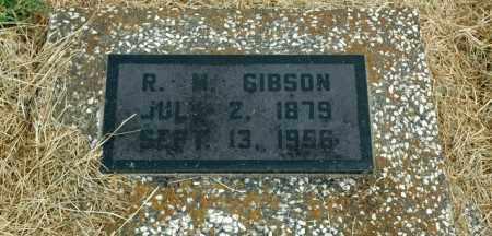 GIBSON, R. M. - Washington County, Arkansas | R. M. GIBSON - Arkansas Gravestone Photos
