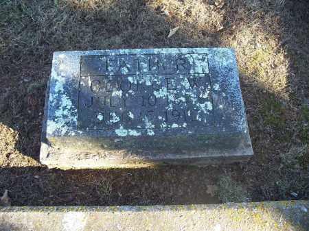 GUILLIAMS, GEORGE W. - Washington County, Arkansas | GEORGE W. GUILLIAMS - Arkansas Gravestone Photos