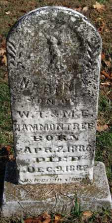 HAMMONTREE, NEELY - Washington County, Arkansas | NEELY HAMMONTREE - Arkansas Gravestone Photos