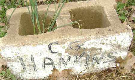 HANKINS, C. G. - Washington County, Arkansas | C. G. HANKINS - Arkansas Gravestone Photos