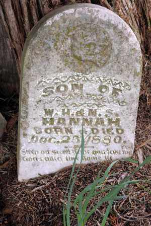 HANNAH, BABY - Washington County, Arkansas | BABY HANNAH - Arkansas Gravestone Photos