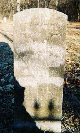 OSBURN HENSON, LEVINA - Washington County, Arkansas | LEVINA OSBURN HENSON - Arkansas Gravestone Photos