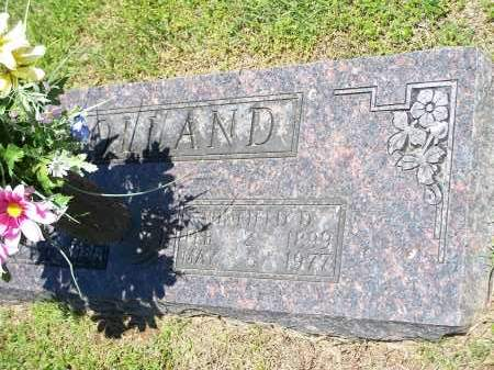 HOLLAND, WINFIELD D. [PIC 1 OF 2] - Washington County, Arkansas   WINFIELD D. [PIC 1 OF 2] HOLLAND - Arkansas Gravestone Photos