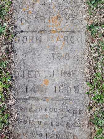 H??YE?, EDGAR - Washington County, Arkansas | EDGAR H??YE? - Arkansas Gravestone Photos