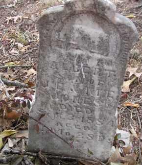 JONES, ALBERT - Washington County, Arkansas   ALBERT JONES - Arkansas Gravestone Photos