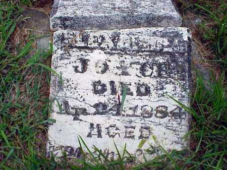 JOYCE, LENA - Washington County, Arkansas   LENA JOYCE - Arkansas Gravestone Photos