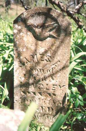 LANGLEY, JAMES A - Washington County, Arkansas | JAMES A LANGLEY - Arkansas Gravestone Photos