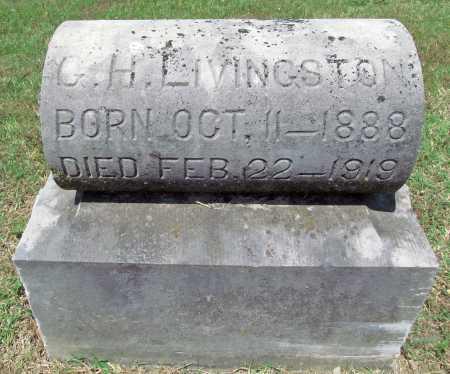 LIVINGSTON, G H - Washington County, Arkansas | G H LIVINGSTON - Arkansas Gravestone Photos