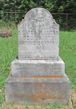 LUCAS, LESTER M - Washington County, Arkansas | LESTER M LUCAS - Arkansas Gravestone Photos