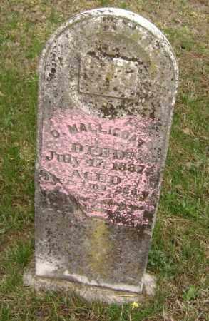 MALLICOAT, DEDMOND - Washington County, Arkansas | DEDMOND MALLICOAT - Arkansas Gravestone Photos