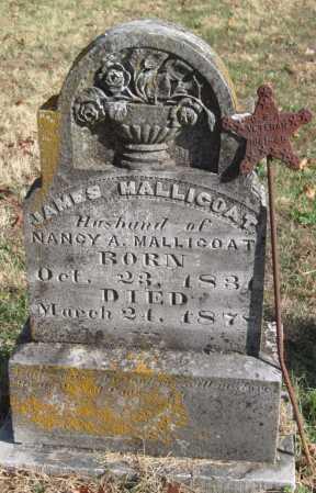 MALLICOAT, JAMES - Washington County, Arkansas | JAMES MALLICOAT - Arkansas Gravestone Photos