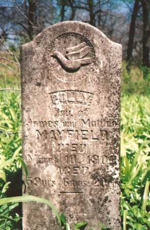 MAYFIELD, POLLY - Washington County, Arkansas | POLLY MAYFIELD - Arkansas Gravestone Photos