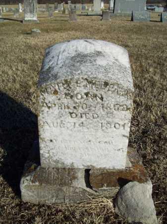 MEDEARIS, MARY EVALINE - Washington County, Arkansas | MARY EVALINE MEDEARIS - Arkansas Gravestone Photos