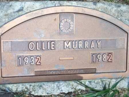 MURRAY, OLLIE - Washington County, Arkansas | OLLIE MURRAY - Arkansas Gravestone Photos