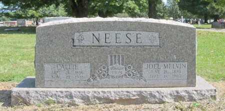 NEESE, JOEL MELVIN - Washington County, Arkansas | JOEL MELVIN NEESE - Arkansas Gravestone Photos