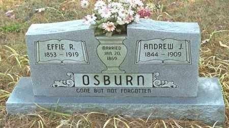OSBURN, ANDREW J - Washington County, Arkansas | ANDREW J OSBURN - Arkansas Gravestone Photos