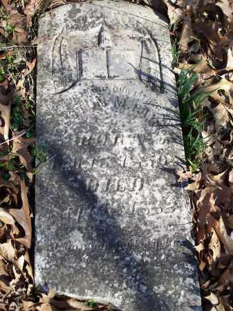 PARKS, HOUSTON M - Washington County, Arkansas   HOUSTON M PARKS - Arkansas Gravestone Photos