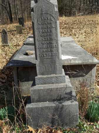 PARKS, MARY A. - Washington County, Arkansas | MARY A. PARKS - Arkansas Gravestone Photos