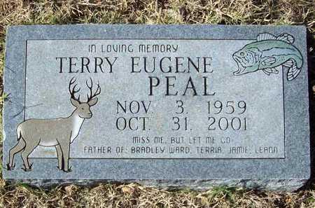 PEAL, TERRY EUGENE - Washington County, Arkansas | TERRY EUGENE PEAL - Arkansas Gravestone Photos