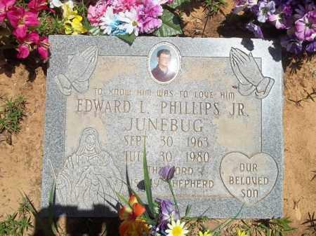 "PHILLIPS, EDWARD L ""JUNEBUG"" JR - Washington County, Arkansas | EDWARD L ""JUNEBUG"" JR PHILLIPS - Arkansas Gravestone Photos"