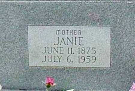 "POOL, SARAH JANE ""JANIE"" (CLOSEUP) - Washington County, Arkansas 