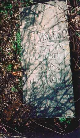 PRUNER, EVA - Washington County, Arkansas | EVA PRUNER - Arkansas Gravestone Photos