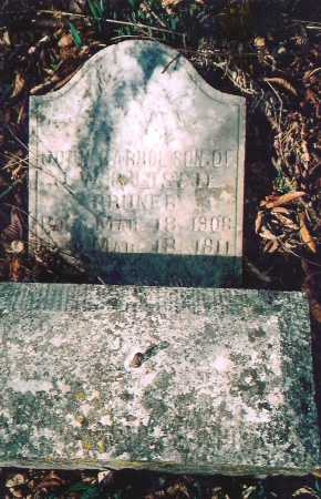 PRUNER, JOHN CARROL - Washington County, Arkansas | JOHN CARROL PRUNER - Arkansas Gravestone Photos