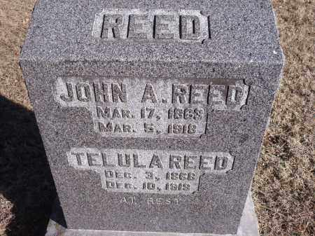 REED, TELULA - Washington County, Arkansas | TELULA REED - Arkansas Gravestone Photos