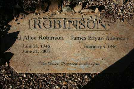 ROBINSON, OPAL - Washington County, Arkansas | OPAL ROBINSON - Arkansas Gravestone Photos