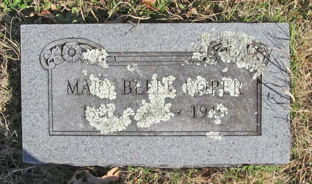 ROPER, MARY BELLE - Washington County, Arkansas | MARY BELLE ROPER - Arkansas Gravestone Photos