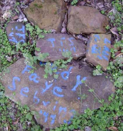 SEBRING, JUDY FAYE - Washington County, Arkansas   JUDY FAYE SEBRING - Arkansas Gravestone Photos