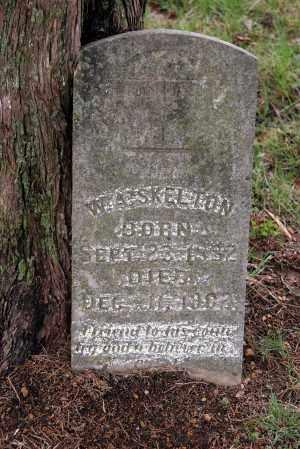 SKELTON, W.A. - Washington County, Arkansas | W.A. SKELTON - Arkansas Gravestone Photos