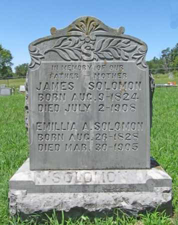 PHILIPS SOLOMON, EMILLIA ANN - Washington County, Arkansas   EMILLIA ANN PHILIPS SOLOMON - Arkansas Gravestone Photos