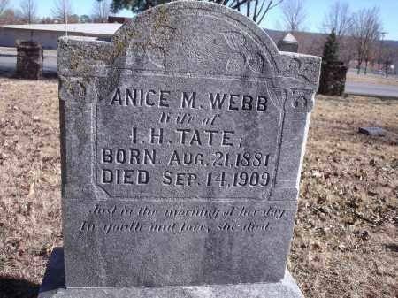 TATE, ANICE M. - Washington County, Arkansas | ANICE M. TATE - Arkansas Gravestone Photos