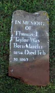 TAYLOR, THOMAS J. - Washington County, Arkansas | THOMAS J. TAYLOR - Arkansas Gravestone Photos