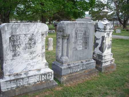 TERPENING, FAMILY GRAVES - Washington County, Arkansas | FAMILY GRAVES TERPENING - Arkansas Gravestone Photos
